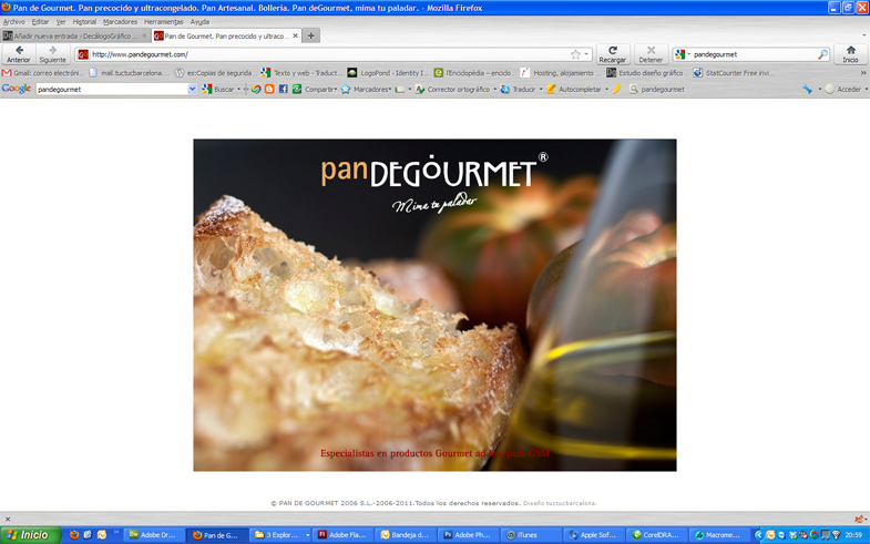 Diseno-web-flash-pandegourmet_03